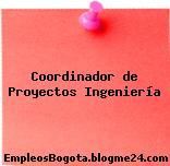 Coordinador de Proyectos Ingeniería