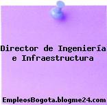 Director de Ingeniería e Infraestructura