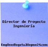 Director de Proyecto Ingeniería