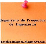 Ingeniero de Proyectos de Ingenieria