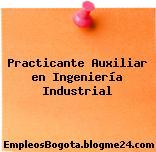 Practicante Auxiliar en Ingeniería Industrial