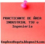 PRACTICANTE DE ÁREA INDUSTRIAL TSU o Ingeniería