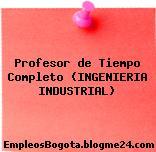 Profesor de Tiempo Completo Ingeniería Industrial
