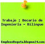 Trabajo : Becario de Ingeniería – Bilingue