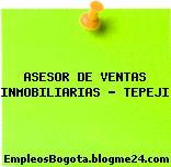 ASESOR DE VENTAS INMOBILIARIAS – TEPEJI