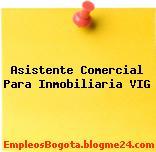 Asistente Comercial Para Inmobiliaria VIG