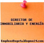 DIRECTOR DE INMOBILIARIA Y ENERGÍA