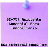 SC-757 Asistente Comercial Para Inmobiliaria