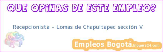 Recepcionista – Lomas de Chapultapec sección V