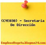 (CYE030) – Secretaria De Dirección