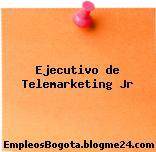 Ejecutivo de Telemarketing Jr