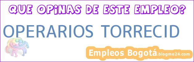 OPERARIOS TORRECID