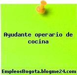 Ayudante operario de cocina