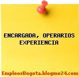 ENCARGADA, OPERARIOS, EXPERIENCIA