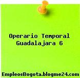 Operario Temporal Guadalajara 6