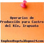Operarios de Producción para Castro del Río, Irapuato