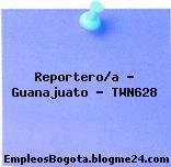Reportero/a – Guanajuato – TWN628
