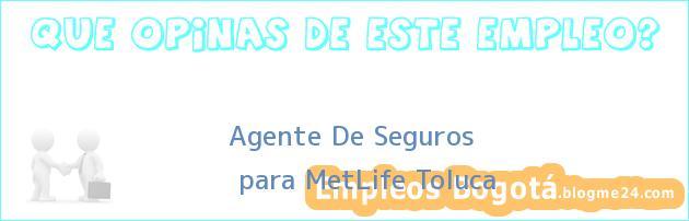 Agente De Seguros | para MetLife Toluca