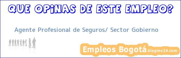 Agente Profesional de Seguros/ Sector Gobierno