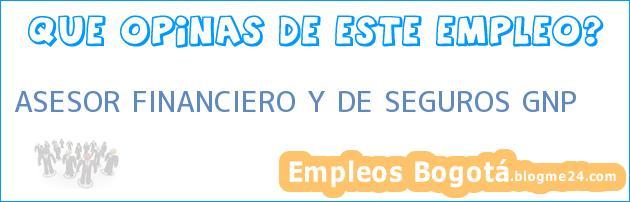 ASESOR FINANCIERO Y DE SEGUROS GNP