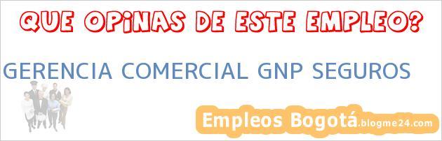 GERENCIA COMERCIAL GNP SEGUROS