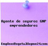 Agente de seguros GNP emprendedores