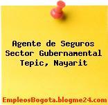 Agente de Seguros Sector Gubernamental Tepic, Nayarit