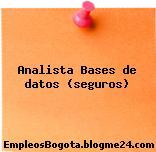 Analista Bases de datos (seguros)