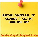 ASESOR COMERCIAL DE SEGUROS A SECTOR GOBIERNO GNP