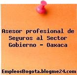 Asesor profesional de Seguros al Sector Gobierno – Oaxaca