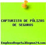 CAPTURISTA DE PÓLIZAS DE SEGUROS