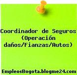 Coordinador de Seguros (Operación daños/Fianzas/Autos)