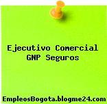 EJECUTIVO COMERCIAL GNP SEGUROS