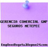 GERENCIA COMERCIAL GNP SEGUROS METEPEC