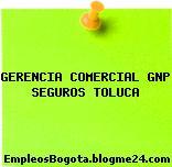 GERENCIA COMERCIAL GNP SEGUROS TOLUCA