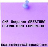 GNP Seguros APERTURA ESTRUCTURA COMERCIAL