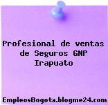Profesional de ventas de Seguros GNP Irapuato