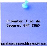 Promotor ( a) de Seguros GNP CDMX