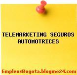 TELEMARKETING SEGUROS AUTOMOTRICES