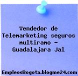 Vendedor de Telemarketing seguros multiramo – Guadalajara Jal