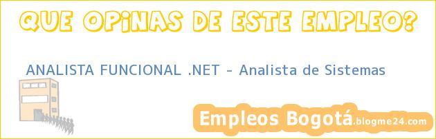 ANALISTA FUNCIONAL .NET – Analista de Sistemas