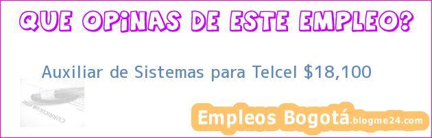 Auxiliar de Sistemas para Telcel $18,100