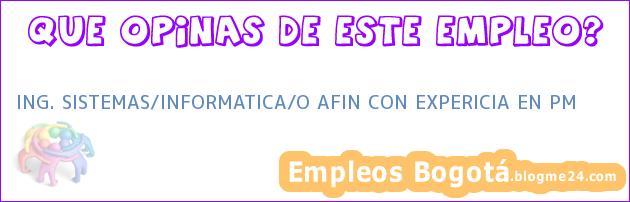ING. SISTEMAS/INFORMATICA/O AFIN CON EXPERICIA EN PM