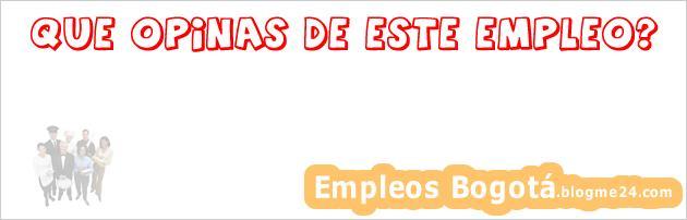 Project Manager/ Scrum | Ingenieros En Sistemas O A Fin ( Titulados) Ciudad De Mexico