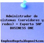 Administrador de sistemas (servidores y redes) – Experto SAP BUSINESS ONE