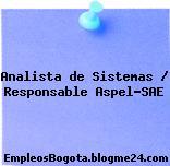 Analista de Sistemas / Responsable Aspel-SAE