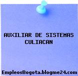 AUXILIAR DE SISTEMAS CULIACAN