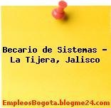 Becario de Sistemas – La Tijera, Jalisco