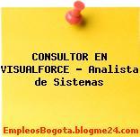 CONSULTOR EN VISUALFORCE – Analista de Sistemas