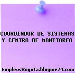 COORDINDOR DE SISTEMAS Y CENTRO DE MONITOREO